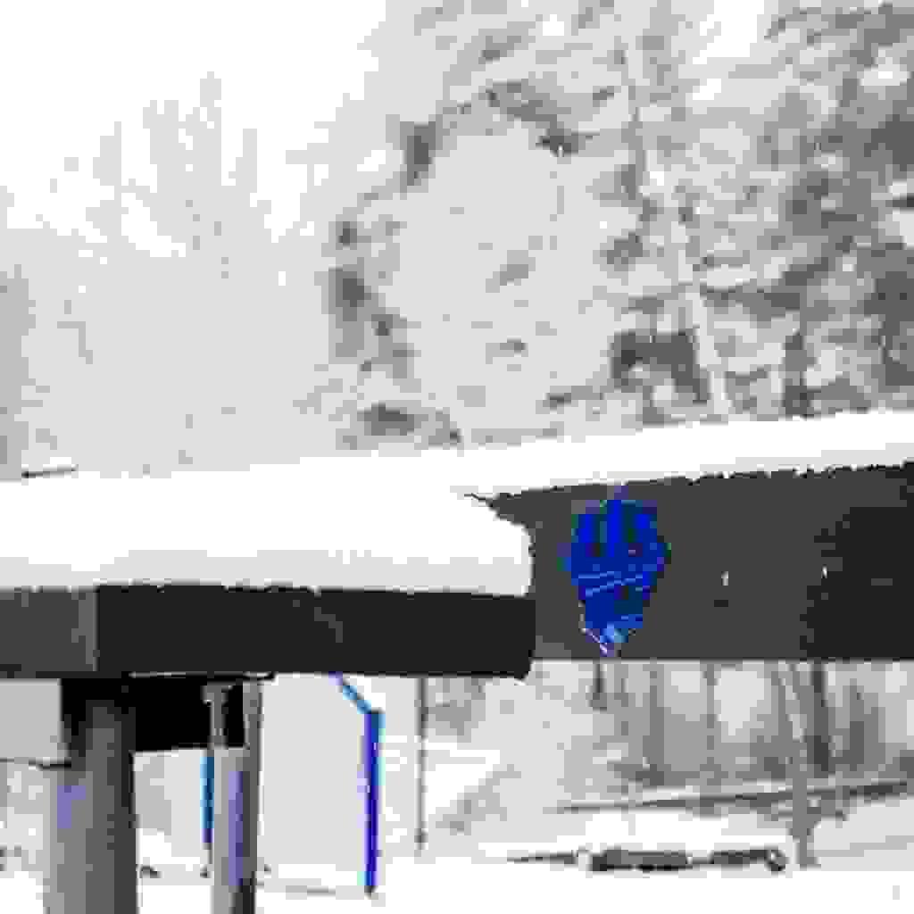 Trident in Winter