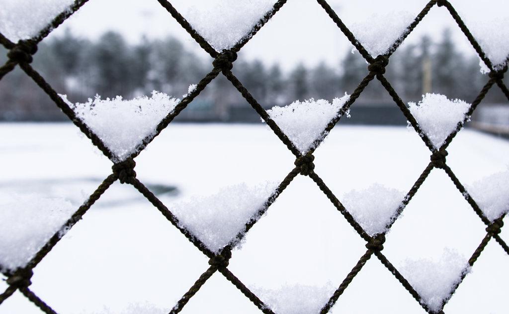 Snowy Netting